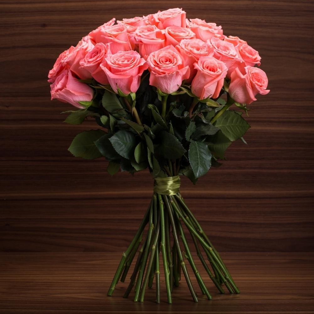 Коралловая роза Амстердам