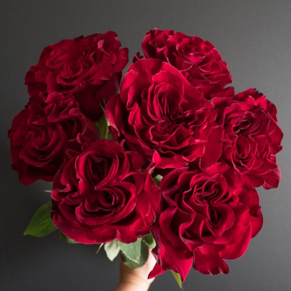 Красная роза Heart