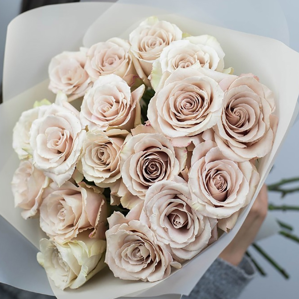 Пудровая роза Quicksand