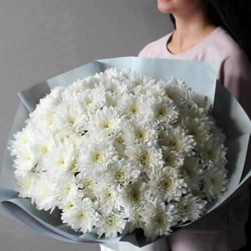 Кустовая хризантема белая Балтика
