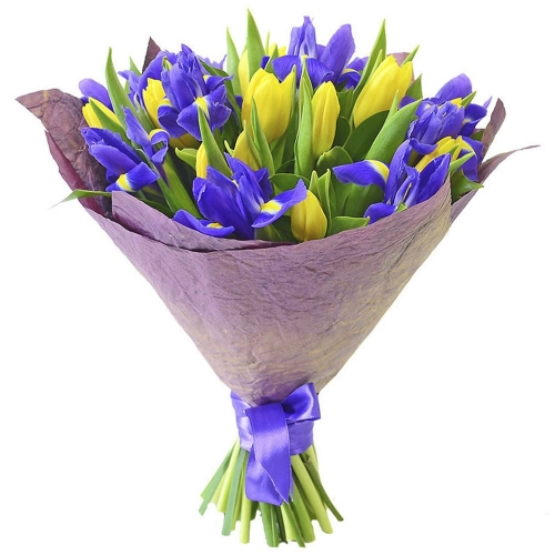 434. Ирисы и тюльпаны
