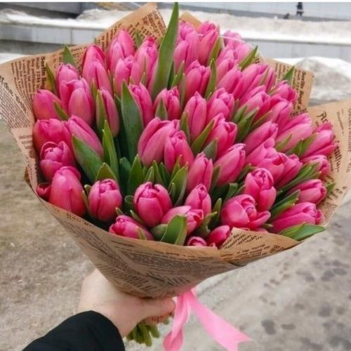 Тюльпан Carola розовый