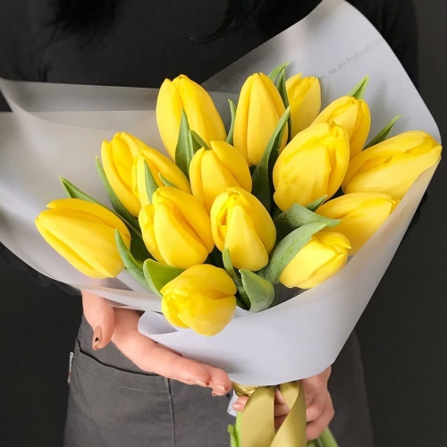 Тюльпан Premium желтый