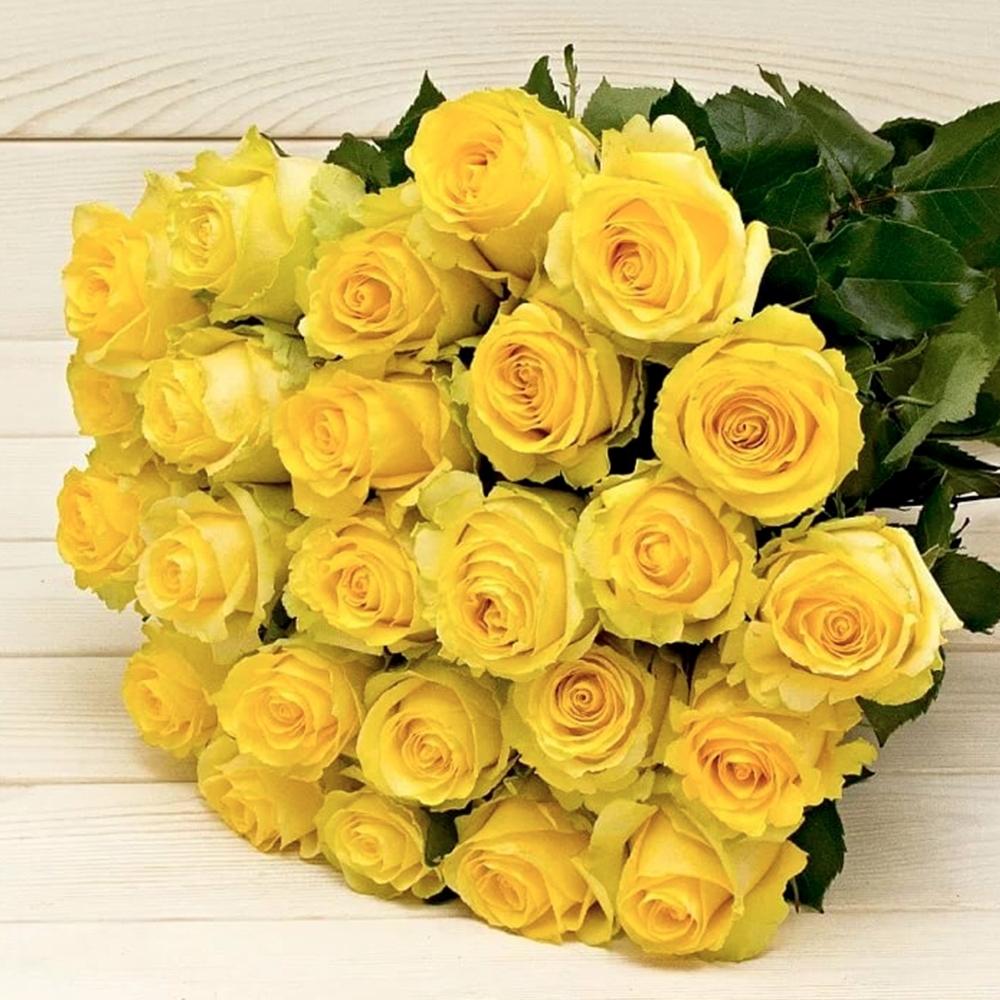 Желтая роза Brighton
